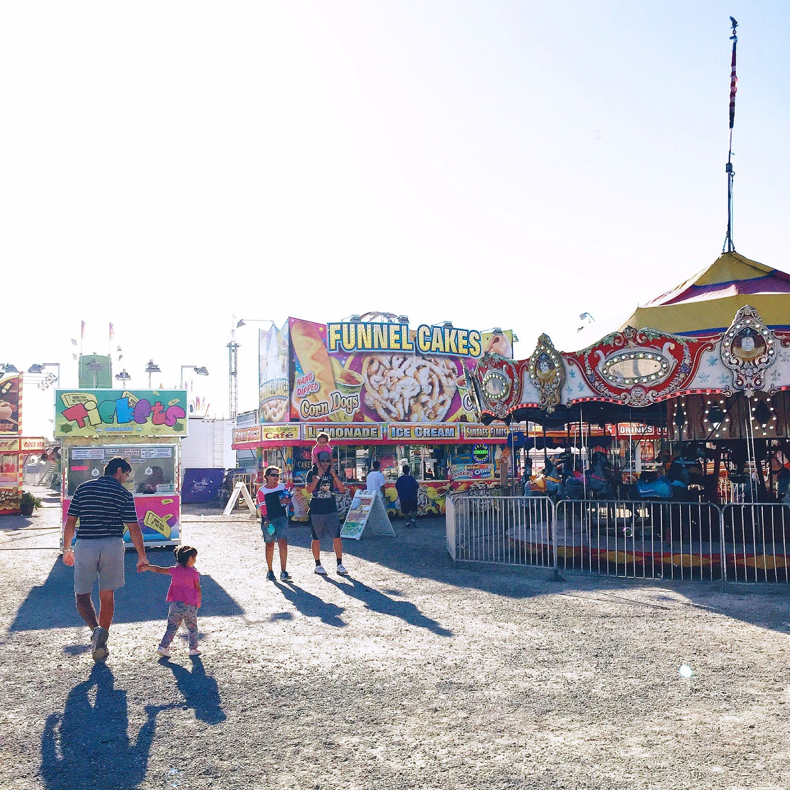 Our Weekend at the County Fair 2015