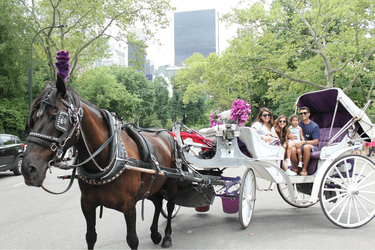 Kid-friendly activities in New York City | Kid-Friendly Activities in NYC. Fun things to do in NYC with your family. Central Park carriage ride.