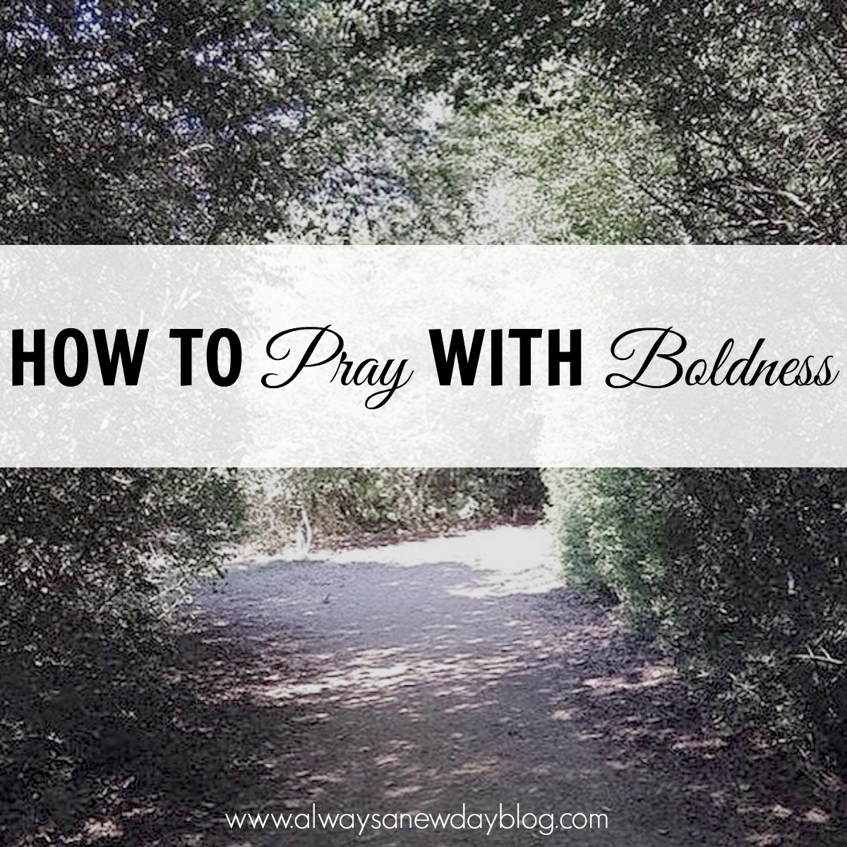 A Guest Post: How to Pray Boldly